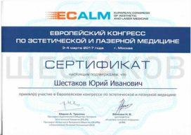 ECALM Шестаков